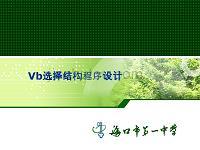Vb选择结构程序设计