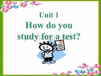 Unit 1 How do you study for a test新目标九年级英语课件