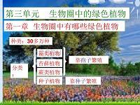 藻类苔藓蕨类植物