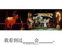 小学语文一年级课件 看马戏 沪教版