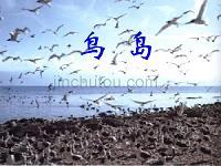 小学语文二年级课件 鸟岛