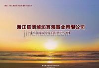 潍坊宜海置业有限公司怡海锦城项目前期策划方案 新