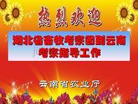 云南省畜禽遗传资源保护与利用情况介绍