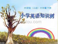 最新外研版(三起)六年级下册小学英语知识树1-10模块