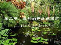 22 森林的开发和保护