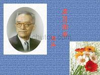 辽宁初中语文三年级2004年第10单元第8课第8节_《我的母亲》